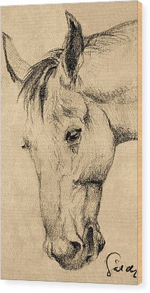 The Horse Portrait Wood Print