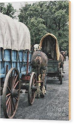 The Horse Train  Wood Print by Steven Digman