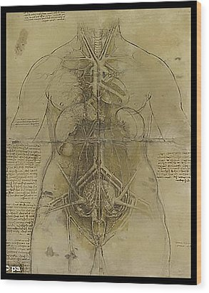 Wood Print featuring the painting The Human Organ System by James Christopher Hill