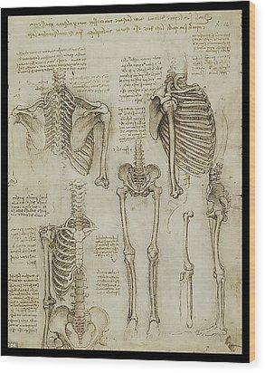 The Human Ribcage Wood Print by James Christopher Hill