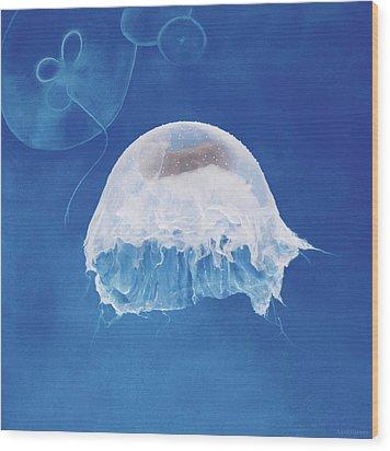 The Jellyfish Nursery Wood Print by Anne Geddes