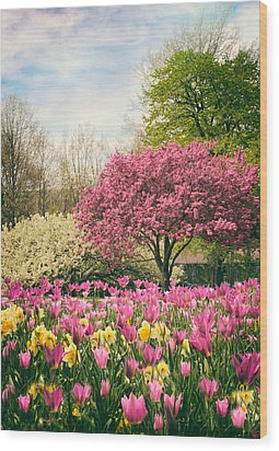 Wood Print featuring the photograph The Joy Of Tulips by Jessica Jenney