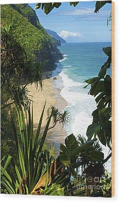 The Kalalau Trail Of Kauai Wood Print by Micah May