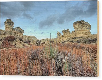 Wood Print featuring the photograph The Kansas Badlands by JC Findley
