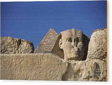 The Khephren Pyramid And The Great Sphinx Of Giza Wood Print by Sami Sarkis