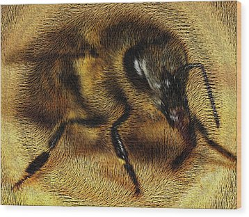 The Killer Bee Wood Print by ISAW Gallery