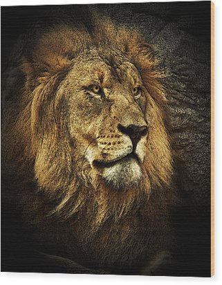 Wood Print featuring the mixed media The King by Elaine Malott