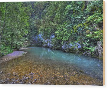 The Kupa River Wood Print by Don Wolf