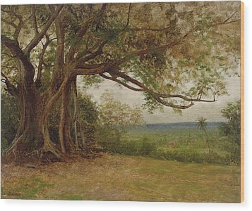 The Landing Of Columbus Wood Print by Albert Bierstadt