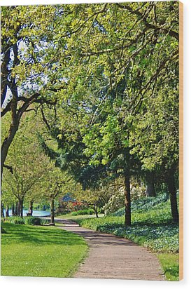 The Lane At Waverly Pond Wood Print