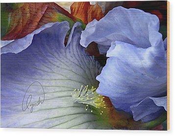 The Last Iris Wood Print