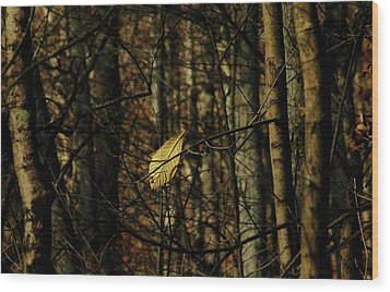 The Last Leaf Wood Print by Bruce Patrick Smith