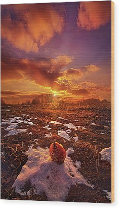 Wood Print featuring the photograph The Last Pumpkin by Phil Koch