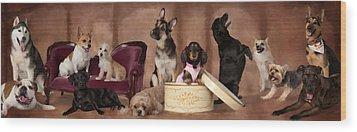The Last Pupper Wood Print by Angel Pachkowski