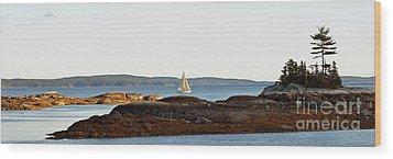 The Last Sail Wood Print