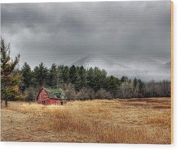The Last Stand Wood Print by Lori Deiter