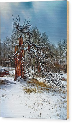Wood Print featuring the photograph The Last Stand by Shane Bechler