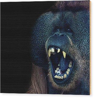 The Laughing Orangutan Wood Print