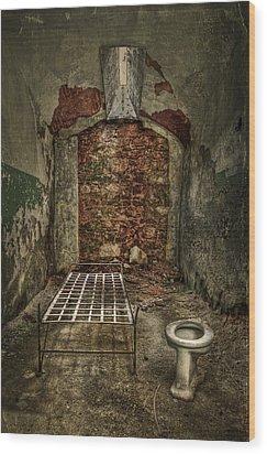 The Life Of Crime Wood Print by Evelina Kremsdorf