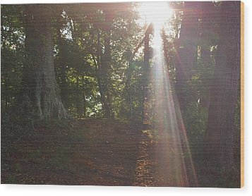 The Light Wood Print