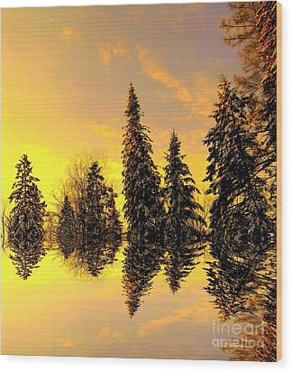 Wood Print featuring the photograph The Light by Elfriede Fulda