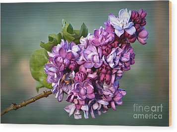 The Lilac Wood Print by Julia Hassett