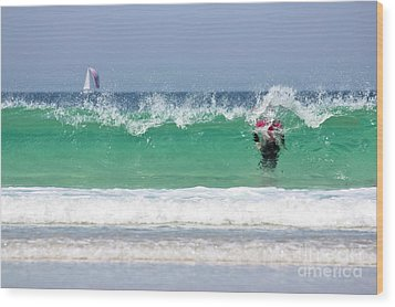 Wood Print featuring the photograph The Little Mermaid by Terri Waters