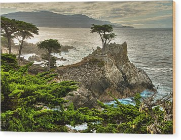 The Lone Cypress Carmel California Wood Print