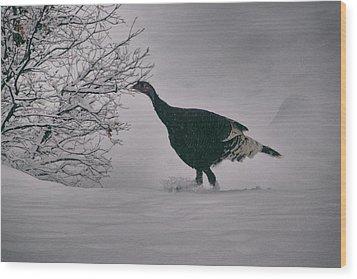 The Lone Turkey Wood Print