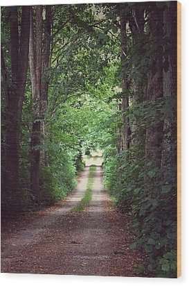 The Long Driveway Wood Print by Karen Stahlros