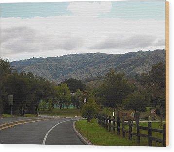 The Long Road Wood Print by Sharon McKeegan