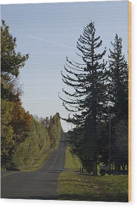 Wood Print featuring the photograph The Long Road by Tara Lynn