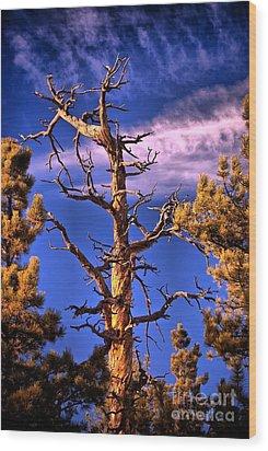The Lurker Wood Print by Charles Dobbs