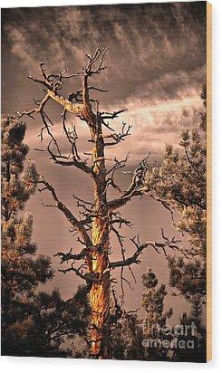 The Lurker II Wood Print by Charles Dobbs