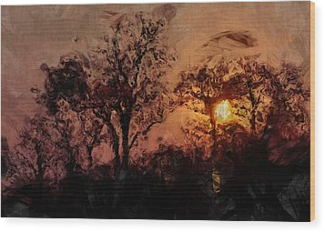The Madness Of Twilight Wood Print by Mark Denham