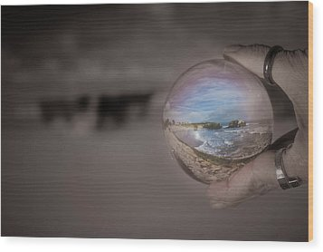 Wood Print featuring the photograph The Magic by Lora Lee Chapman