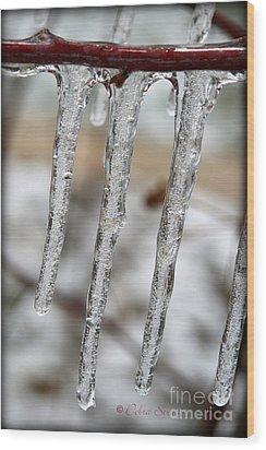 The Makings Of Winter Wood Print by Debra Straub