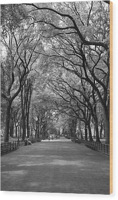 The Mall And The Poets Wood Print by Christopher Kirby