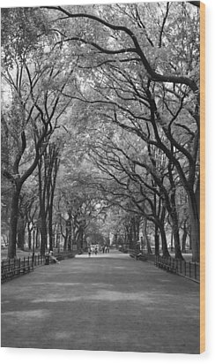 The Mall In Central Park And Poets Walk Wood Print