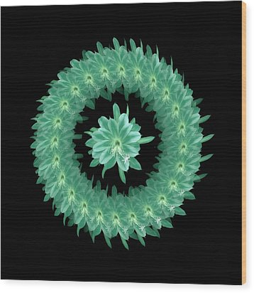 The Mandala Of Sea Greentropical Flower Wood Print by Jacqueline Migell