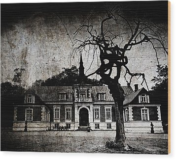 The Mansion Wood Print by Laura Melis