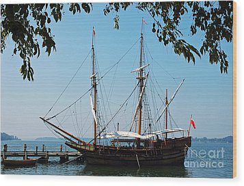 The Maryland Dove Ship Wood Print by Thomas R Fletcher