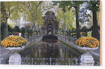 The Medici Fountain At The Jardin Du Luxembourg In Paris France. Wood Print by Richard Rosenshein