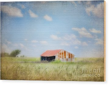 Wood Print featuring the photograph The Meeting Place by Betty LaRue