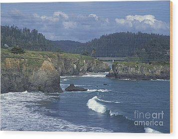 Wood Print featuring the photograph The Mendocino Coast 2 by Stan and Anne Foster