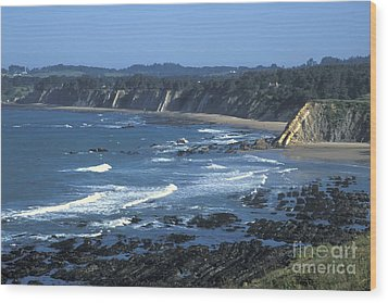 The Mendocino Coast Wood Print by Stan and Anne Foster