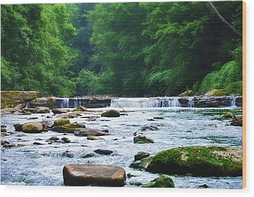 The Mighty Wissahickon Wood Print by Bill Cannon