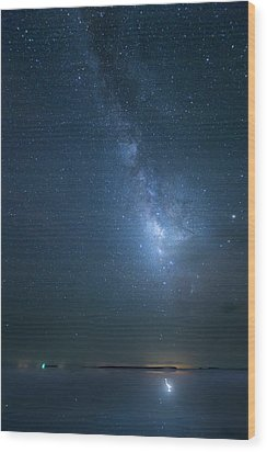 Wood Print featuring the photograph The Milky Way And The Egret by Mark Andrew Thomas