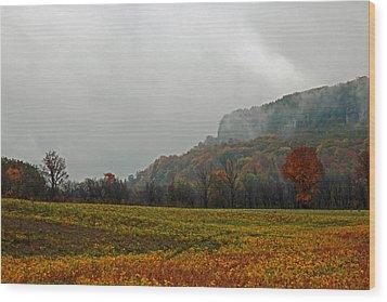 Wood Print featuring the photograph The Mist by John Stuart Webbstock
