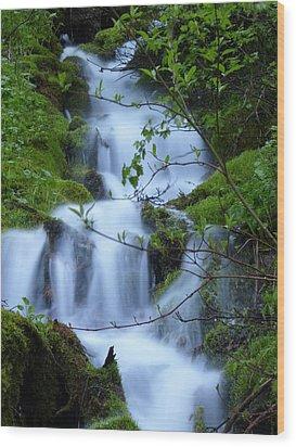 The Misty Brook Wood Print by DeeLon Merritt